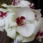 Bouquet orchidee bianche e calle - Pepe Rosa Eventi