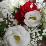 Fiori - Pepe Rosa Eventi